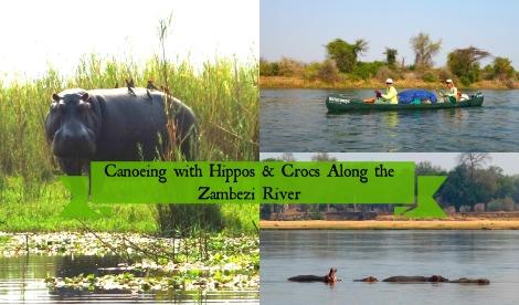 canoeingzambezi